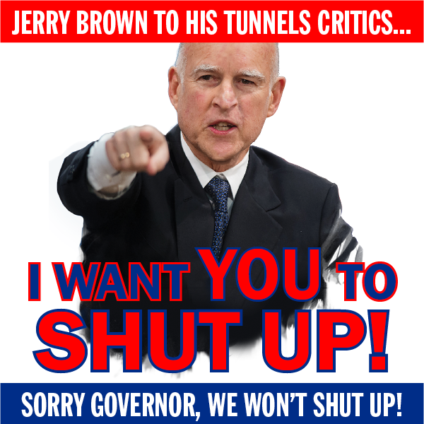 Critical Action Alert! Attend the FINAL tunnels hearings!